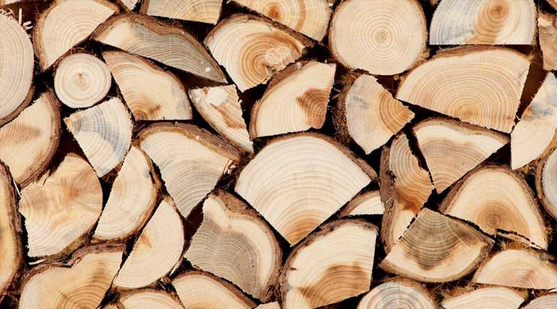 impianti-legna-spaccata-cesena